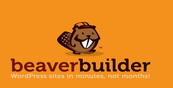 Download Beaver Builder v2.3.2.2 - Pro Free / Nulled