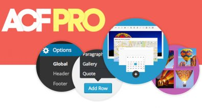 Download Advanced Custom Fields  v5.8.9 - PRO Free / Nulled