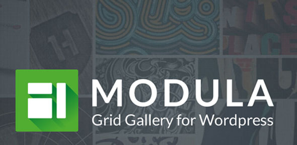 Download Modula Pro v2.2.3 - Best WordPress Image Gallery Free / Nulled