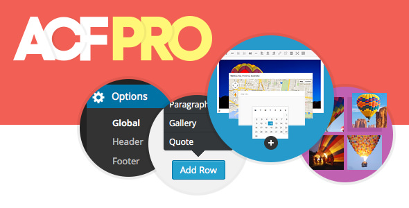 Download Advanced Custom Fields Pro  v5.8.10 - ACF PRO Free / Nulled