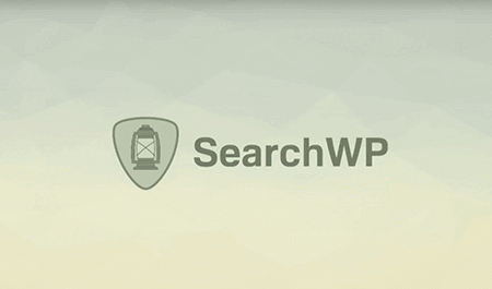 Download SearchWP v3.1.13 - WP Plugin Free / Nulled