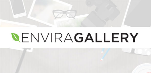 Download Envira Gallery v1.8.9.6 - + Addons Free / Nulled