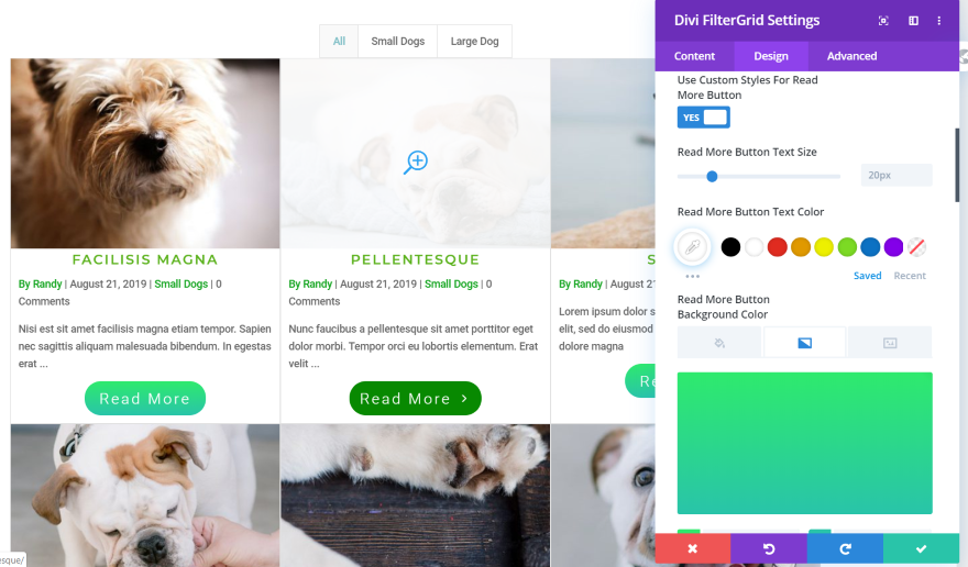 Download Divi FilterGrid v2.1.1 - Create a Beautiful Grid Layout of any Post Type Free / Nulled