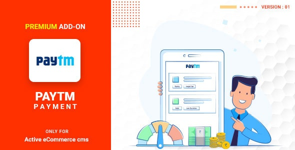 Download Active eCommerce Paytm add-on v1.0 Free / Nulled