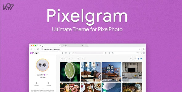 Download Pixelgram v1.4.1 - The Ultimate PixelPhoto Theme Free / Nulled