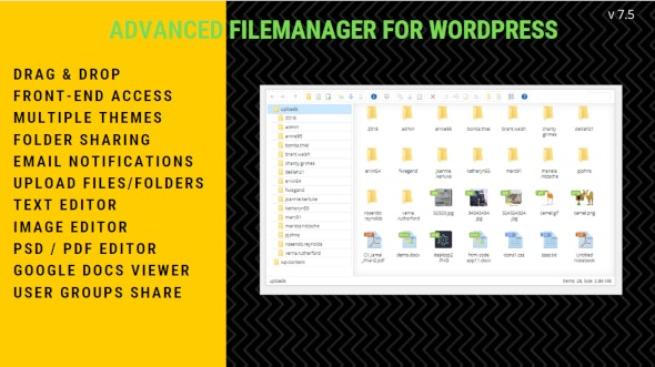 Download File Manager Plugin For Wordpress v7.5.2 Free / Nulled
