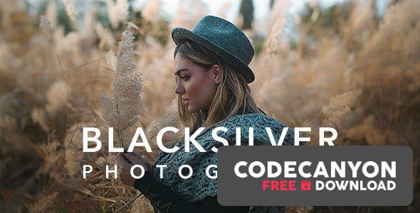 Download Blacksilver v8.4.4 – Photography Theme for WordPress Free / Nulled